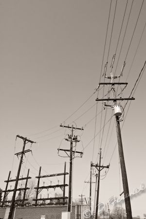power-lines-web.jpg