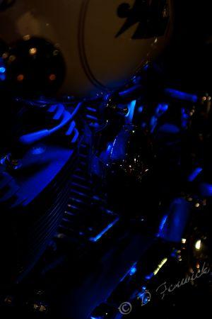 sv2011-4-web.jpg