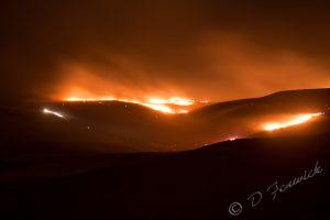 SparksFire112311-web.jpg