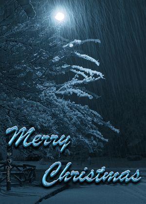 Christmas2011web.jpg