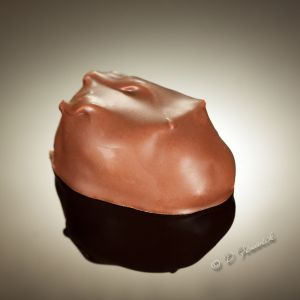 Chocolate3-square.jpg